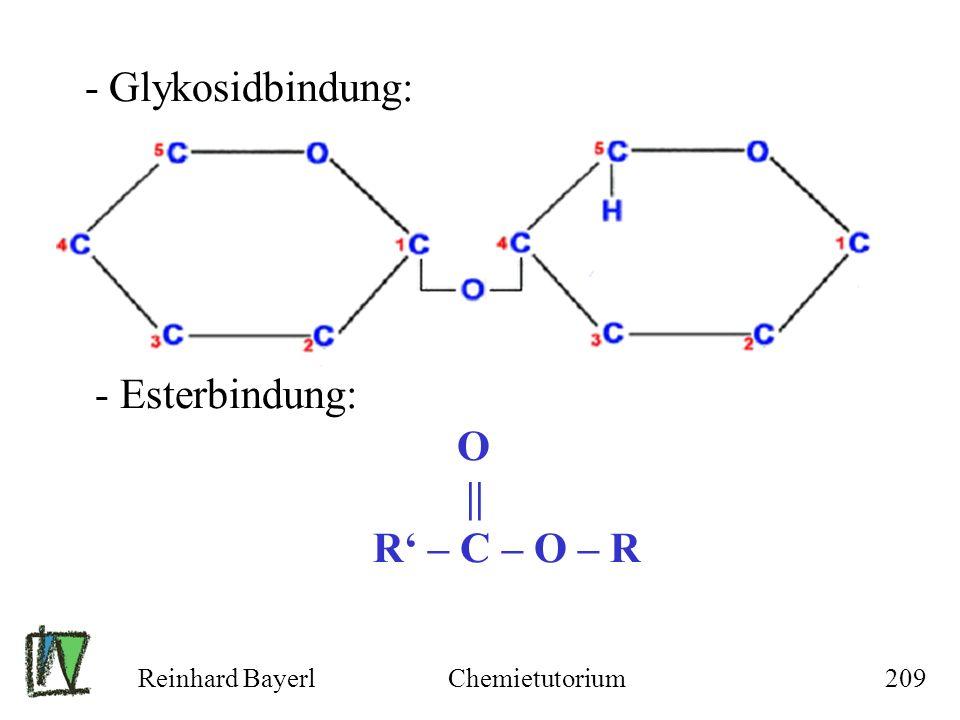 - Glykosidbindung: - Esterbindung: O || R' – C – O – R