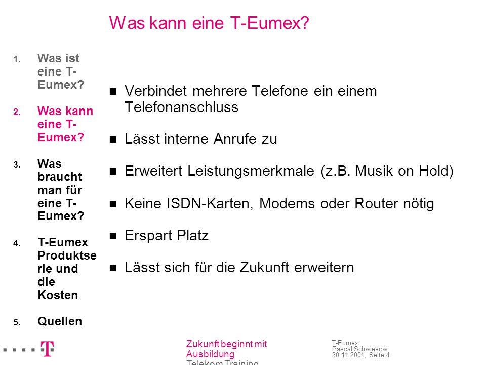 Was kann eine T-Eumex Was ist eine T-Eumex Was kann eine T-Eumex Was braucht man für eine T-Eumex