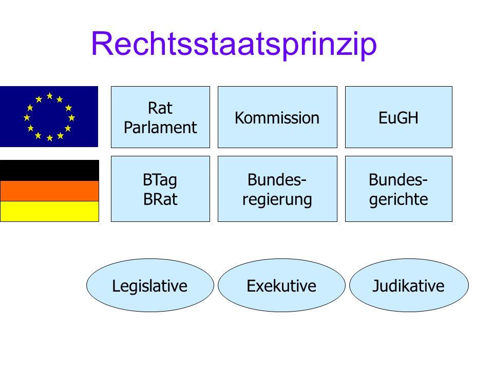 Rechtsstaatsprinzip Rat Parlament Kommission EuGH BTag BRat Bundes-