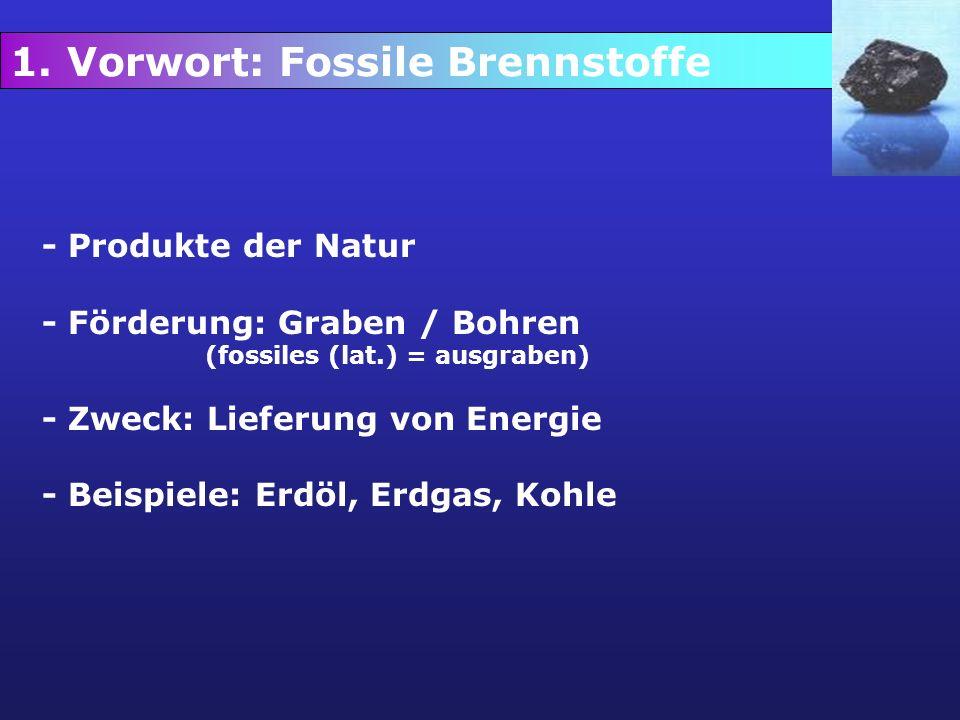 1. Vorwort: Fossile Brennstoffe