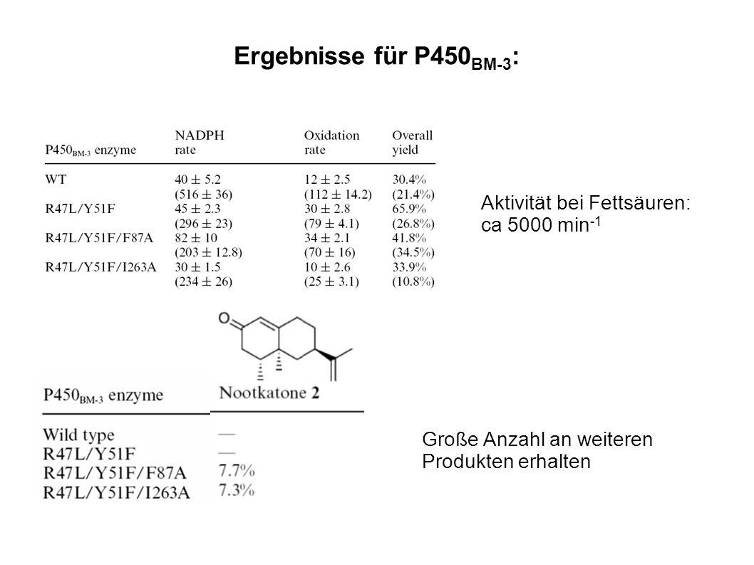 Ergebnisse für P450BM-3: Aktivität bei Fettsäuren: ca 5000 min-1