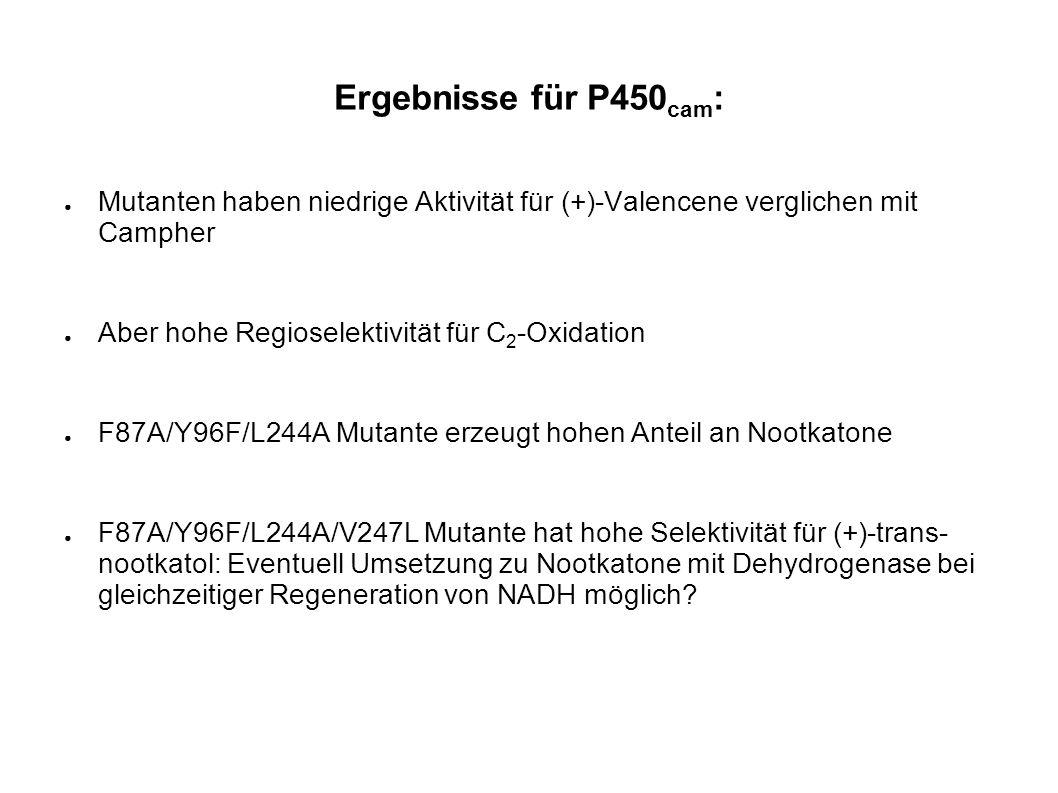 Ergebnisse für P450cam: Mutanten haben niedrige Aktivität für (+)-Valencene verglichen mit Campher.