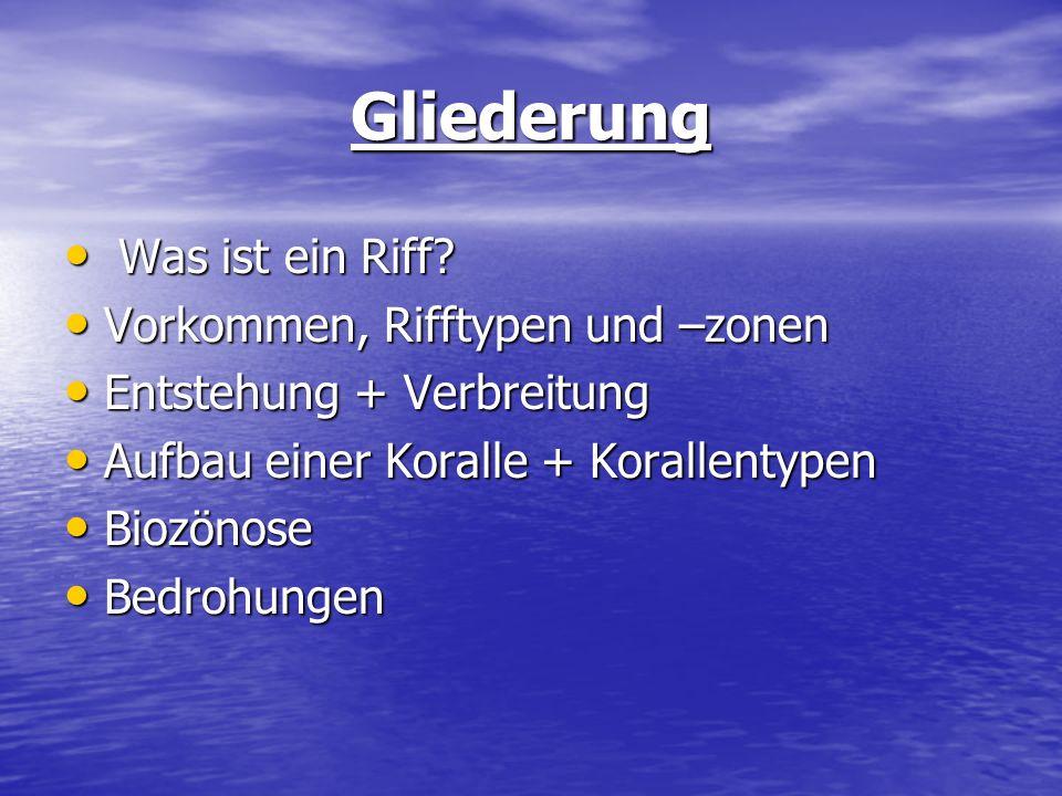 Gliederung Was ist ein Riff Vorkommen, Rifftypen und –zonen