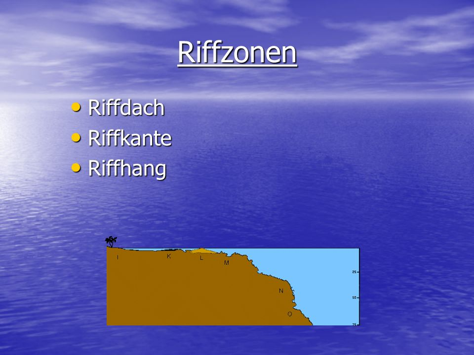 Riffzonen Riffdach Riffkante Riffhang
