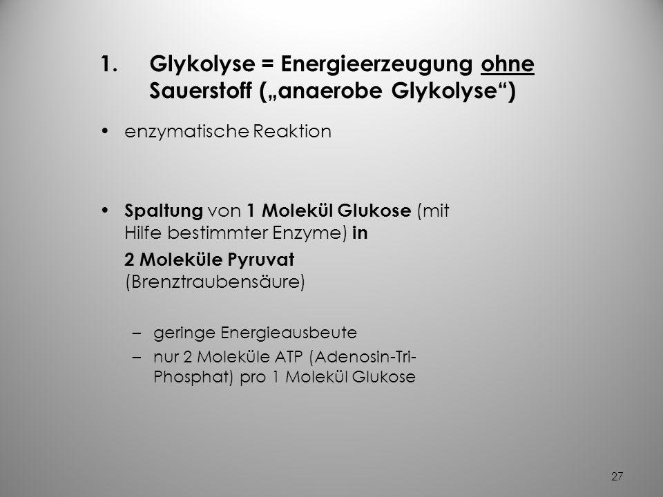 "Glykolyse = Energieerzeugung ohne Sauerstoff (""anaerobe Glykolyse )"