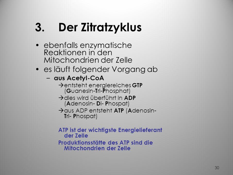 3. Der Zitratzyklus ebenfalls enzymatische Reaktionen in den Mitochondrien der Zelle. es läuft folgender Vorgang ab.