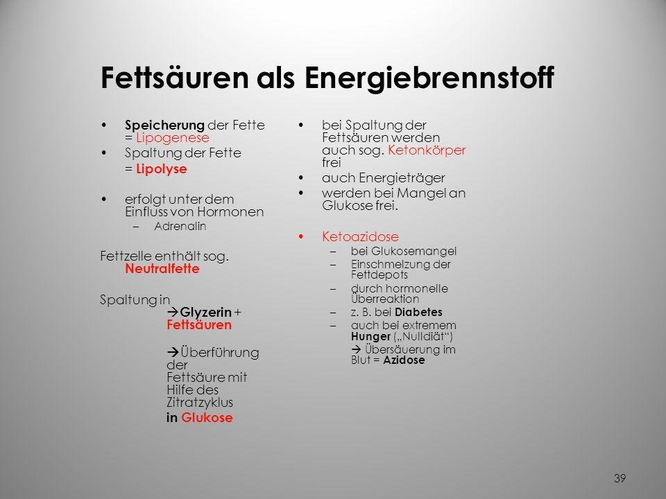 Fettsäuren als Energiebrennstoff