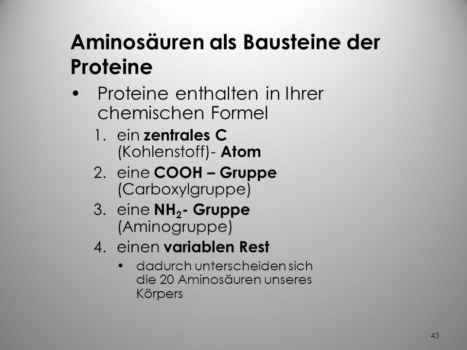 Aminosäuren als Bausteine der Proteine