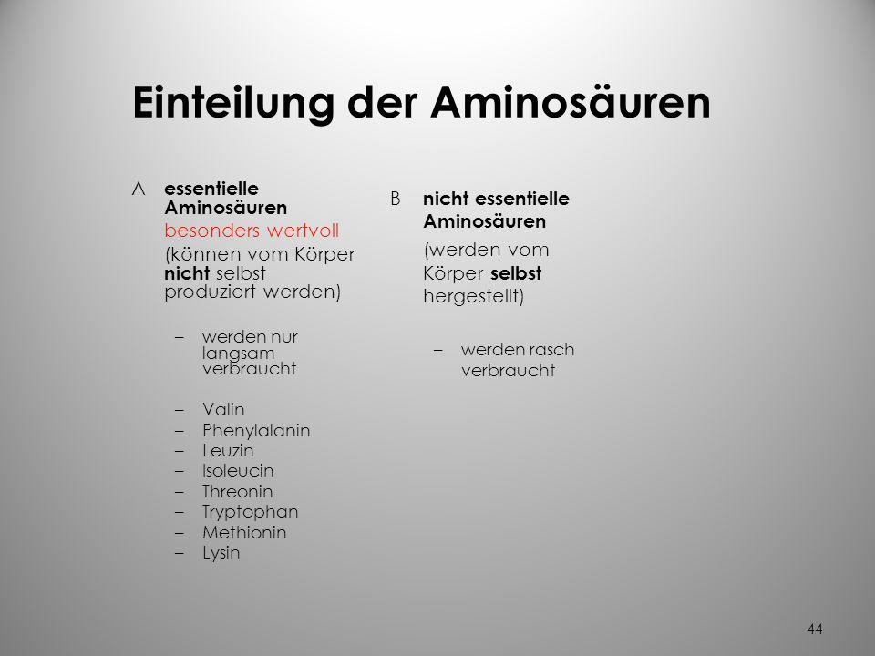 Einteilung der Aminosäuren
