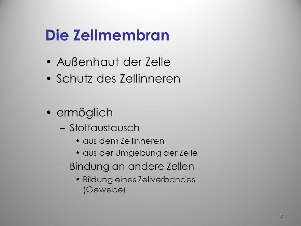 Nett Anatomie Und Physiologie Zelle Zeitgenössisch - Menschliche ...
