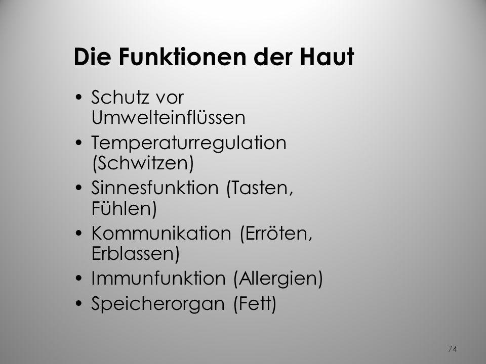 Ausgezeichnet Endokrine Drüsen Und Ihre Funktionen Galerie ...