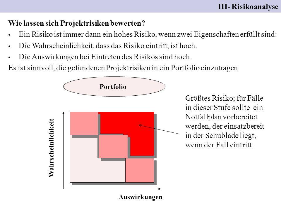Wie lassen sich Projektrisiken bewerten