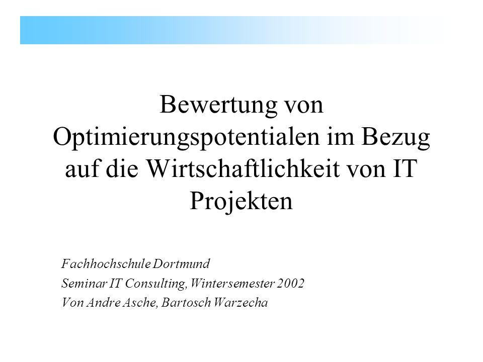 Bewertung von Optimierungspotentialen im Bezug auf die Wirtschaftlichkeit von IT Projekten