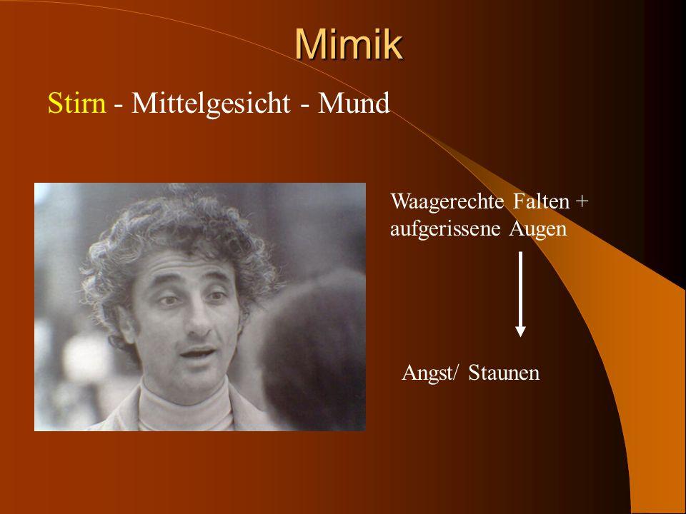 Mimik Stirn - Mittelgesicht - Mund