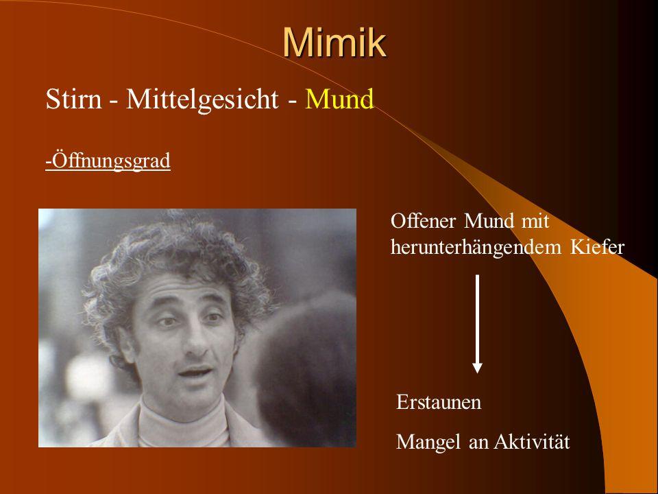 Mimik Stirn - Mittelgesicht - Mund -Öffnungsgrad