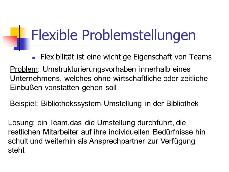Flexible Problemstellungen