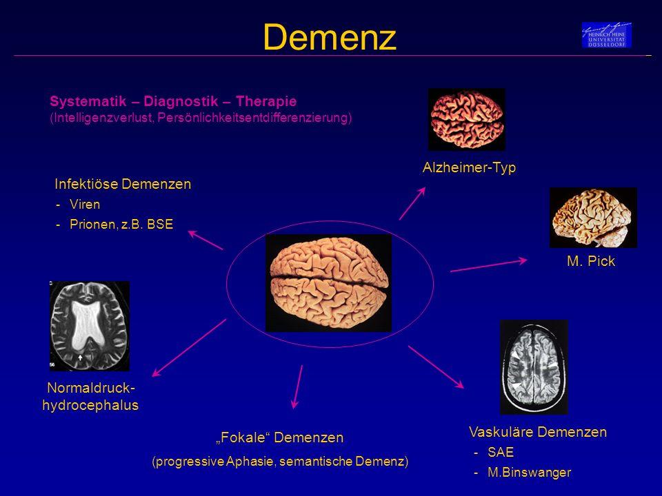 Systematik – Diagnostik – Therapie (Intelligenzverlust, Persönlichkeitsentdifferenzierung)