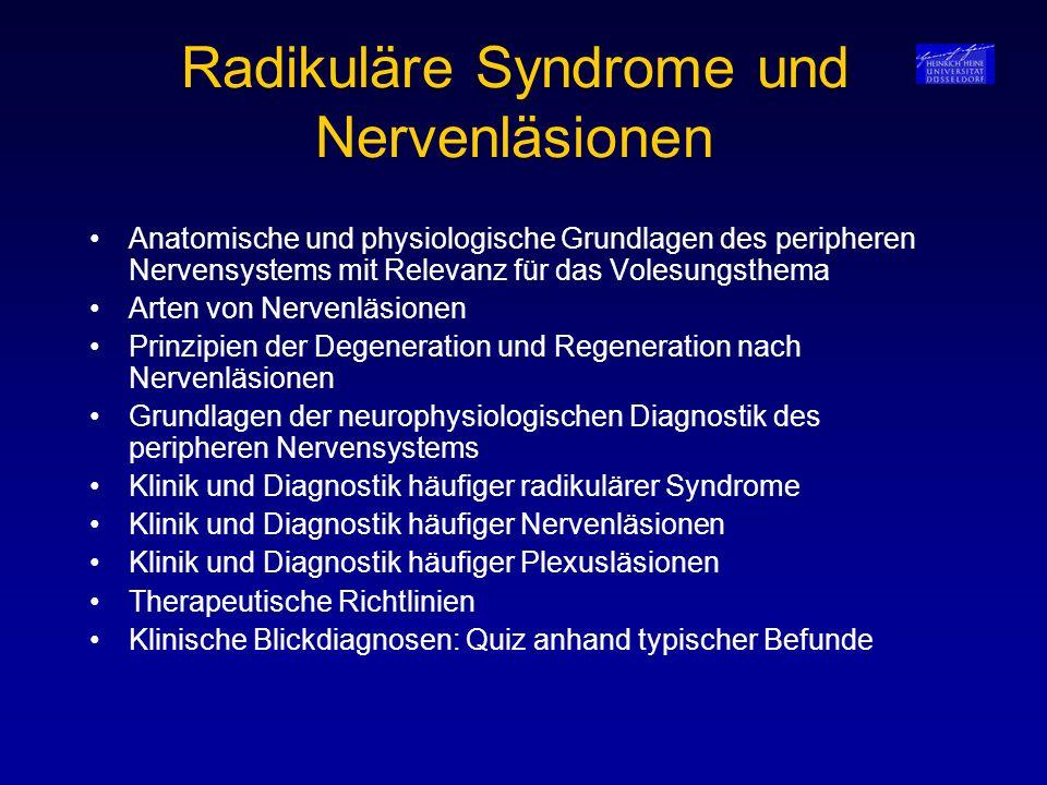 Radikuläre Syndrome und Nervenläsionen