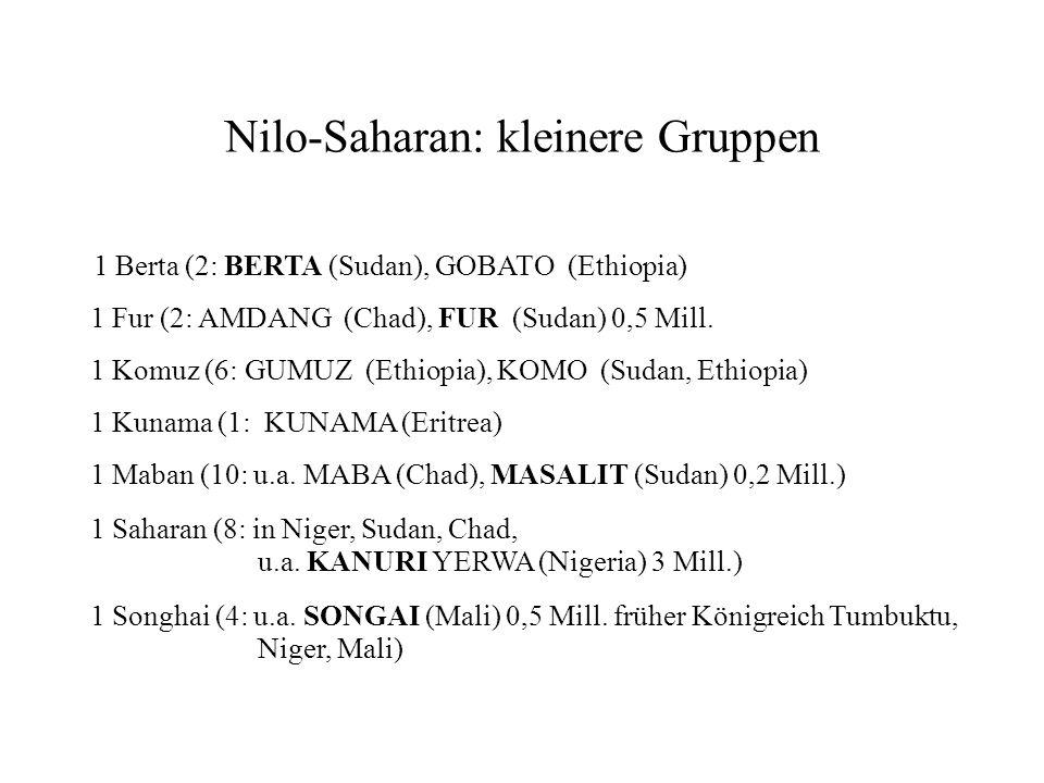 Nilo-Saharan: kleinere Gruppen