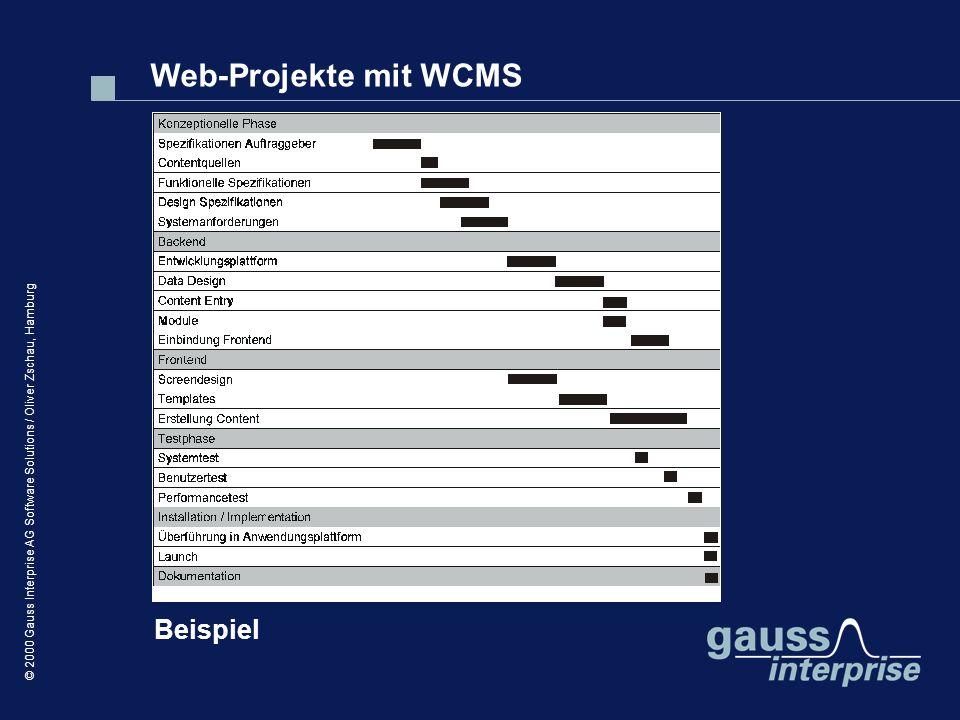 Web-Projekte mit WCMS Beispiel