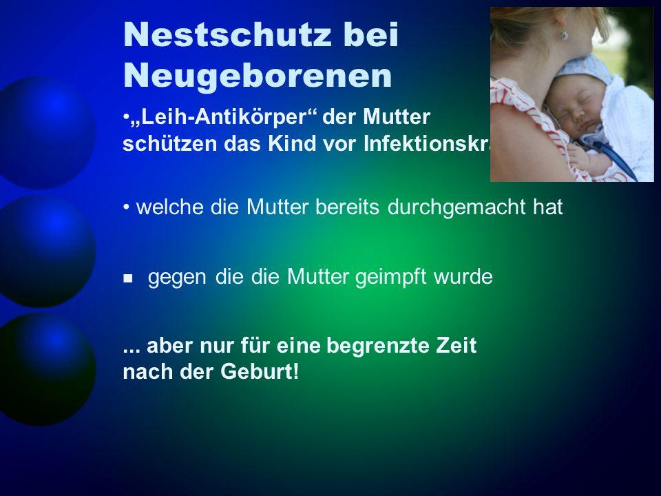 Nestschutz bei Neugeborenen