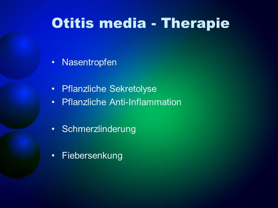 Otitis media - Therapie