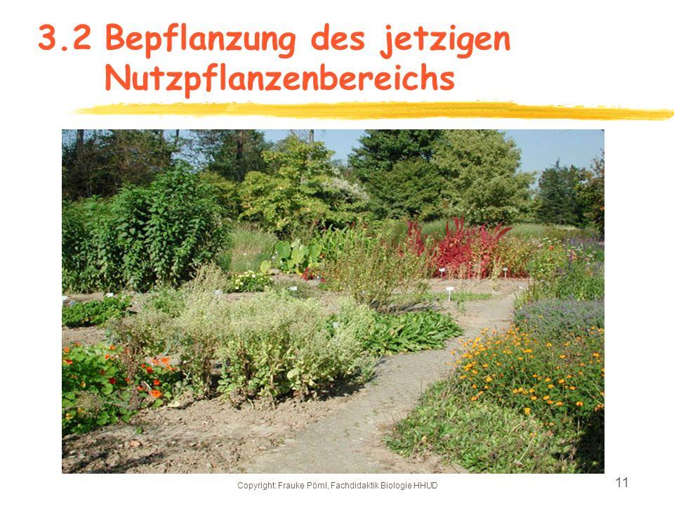3.2 Bepflanzung des jetzigen Nutzpflanzenbereichs