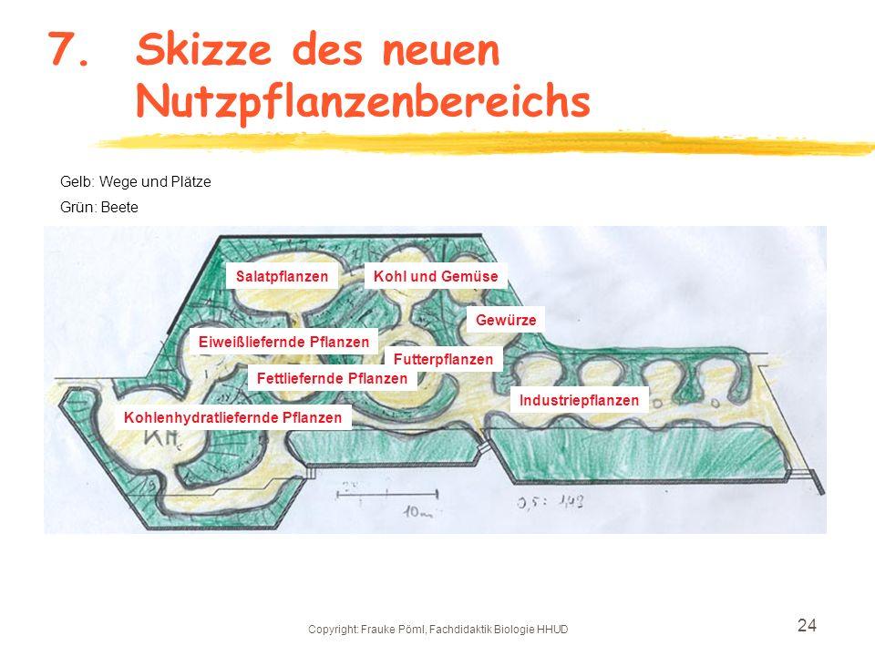 7. Skizze des neuen Nutzpflanzenbereichs