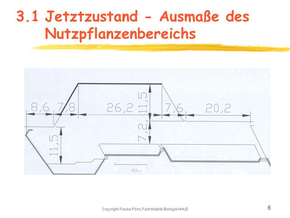 3.1 Jetztzustand - Ausmaße des Nutzpflanzenbereichs