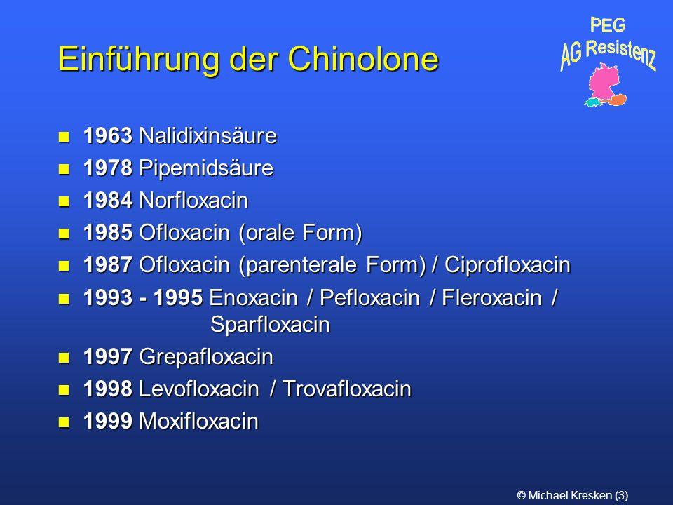 Einführung der Chinolone