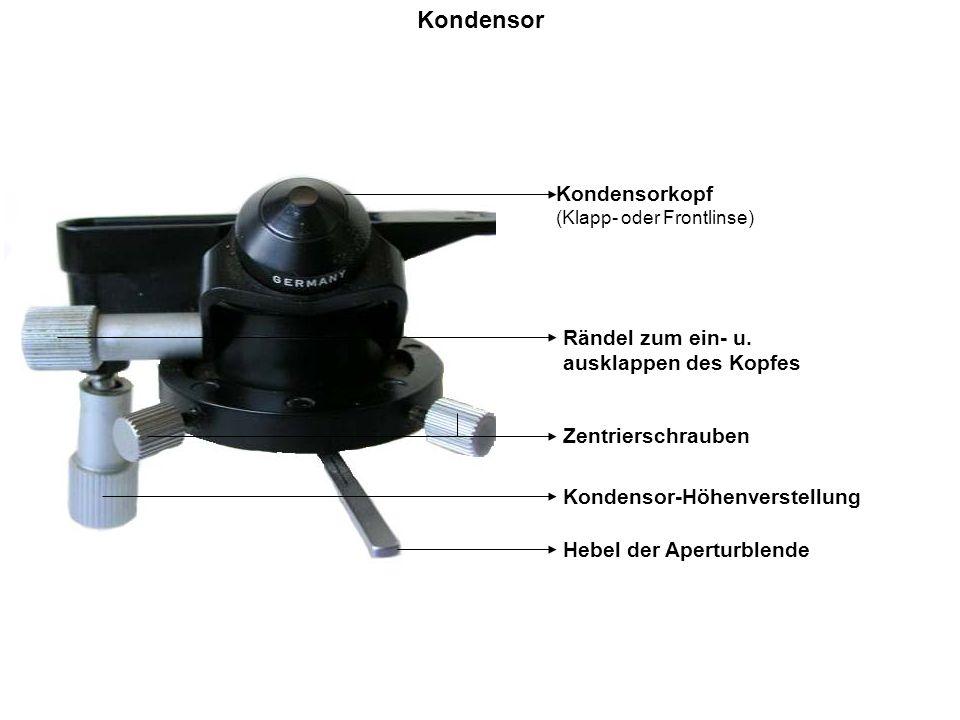 Kondensor Kondensorkopf Rändel zum ein- u. ausklappen des Kopfes