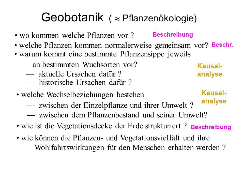 Geobotanik (  Pflanzenökologie)