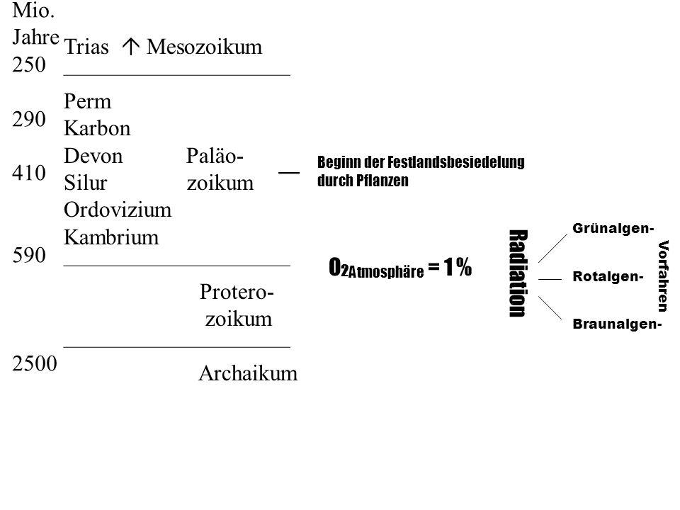 Mio. Jahre 250 Trias  Mesozoikum —————————— 290 Perm Karbon 410