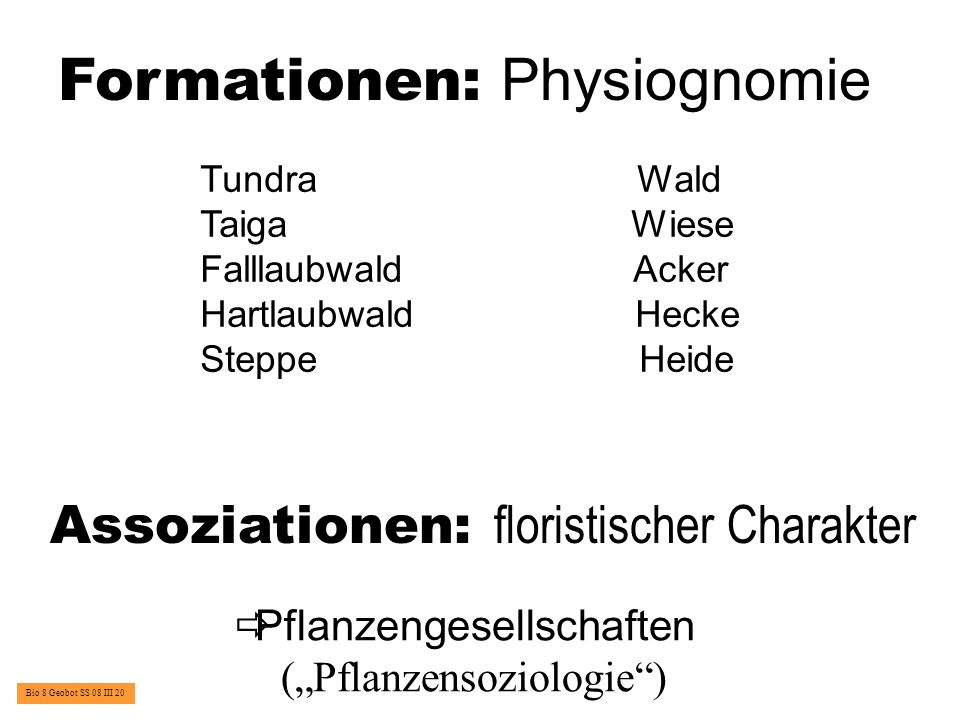 Formationen: Physiognomie