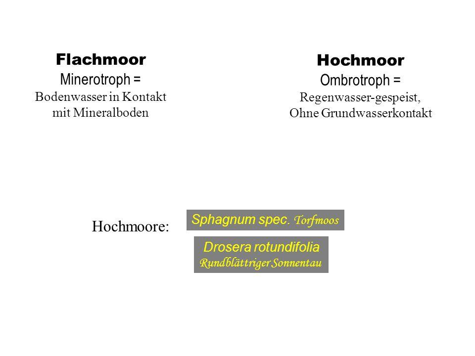 Flachmoor Hochmoor Minerotroph = Ombrotroph = Hochmoore: