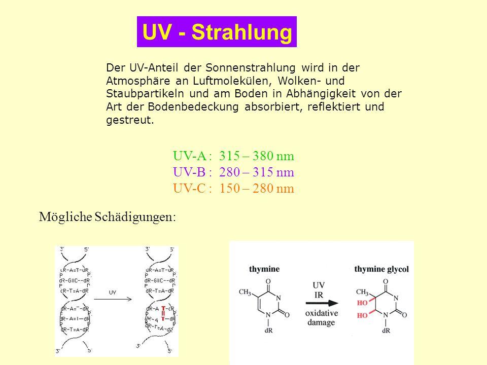 UV - Strahlung UV-A : 315 – 380 nm UV-B : 280 – 315 nm