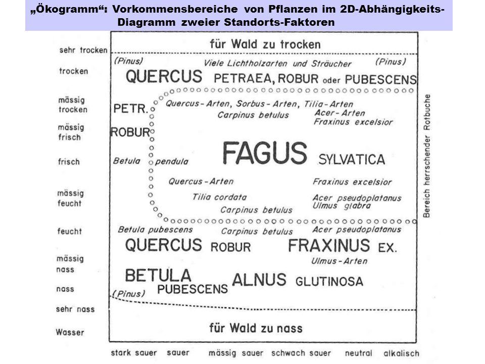 """""""Ökogramm : Vorkommensbereiche von Pflanzen im 2D-Abhängigkeits- Diagramm zweier Standorts-Faktoren"""