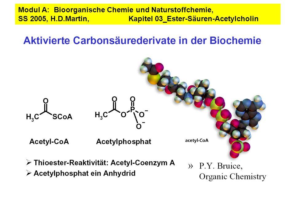 Modul A: Bioorganische Chemie und Naturstoffchemie, SS 2005, H. D