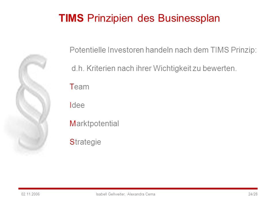 TIMS Prinzipien des Businessplan