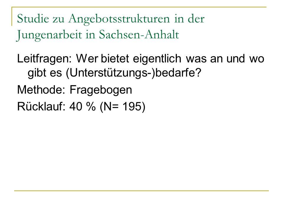 Studie zu Angebotsstrukturen in der Jungenarbeit in Sachsen-Anhalt