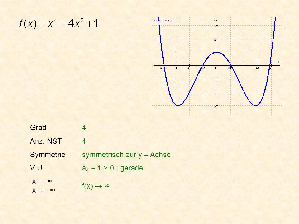 Grad Anz. NST. Symmetrie. VIU. x→ ∞ x→ - ∞ 4.