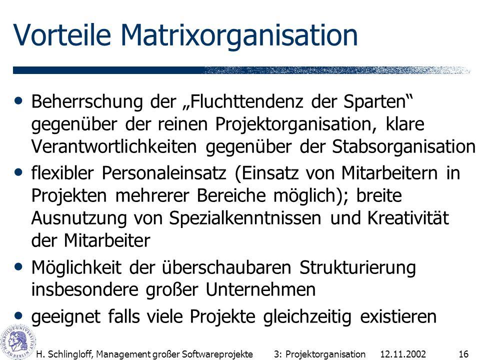 Vorteile Matrixorganisation