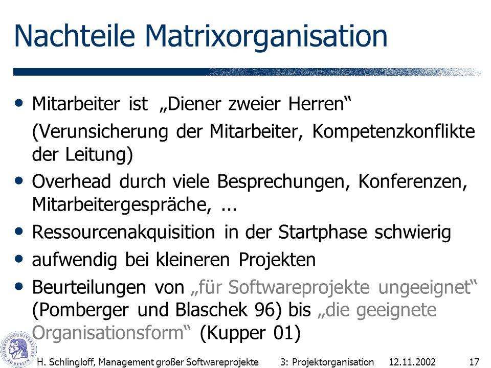 Nachteile Matrixorganisation