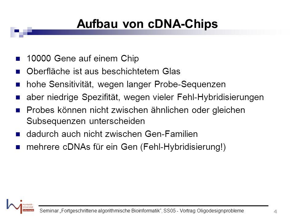 Aufbau von cDNA-Chips 10000 Gene auf einem Chip