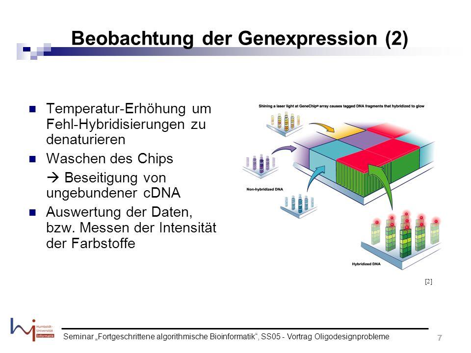 Beobachtung der Genexpression (2)