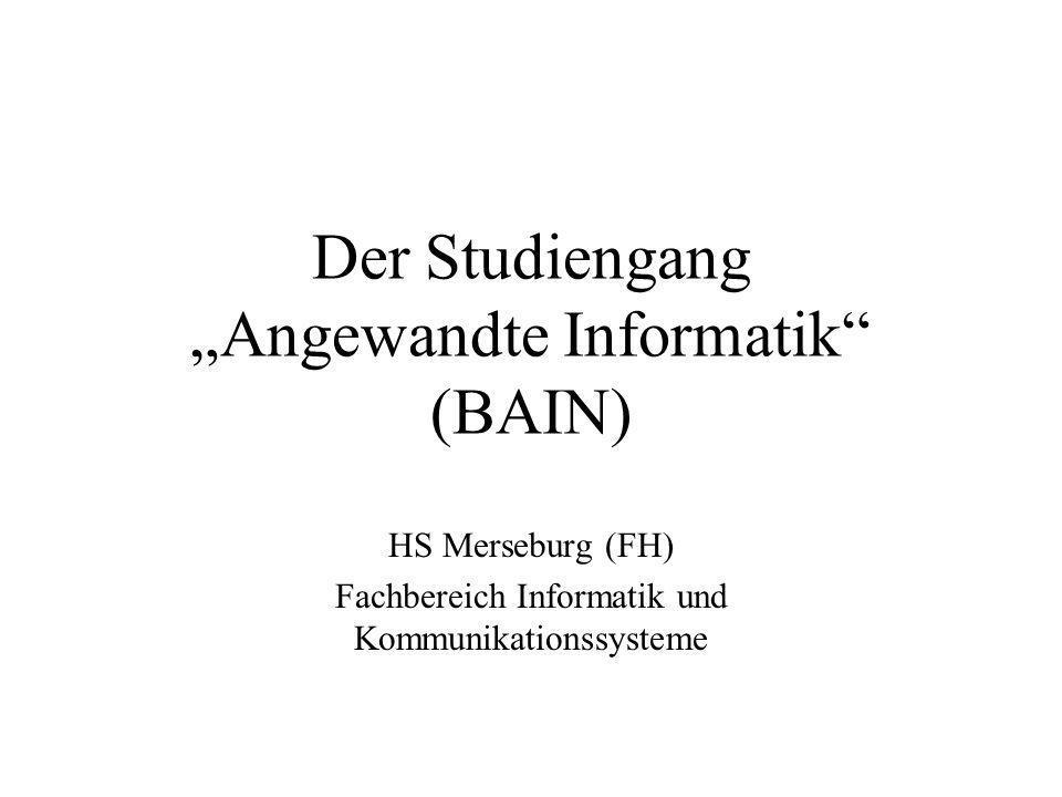 """Der Studiengang """"Angewandte Informatik (BAIN)"""
