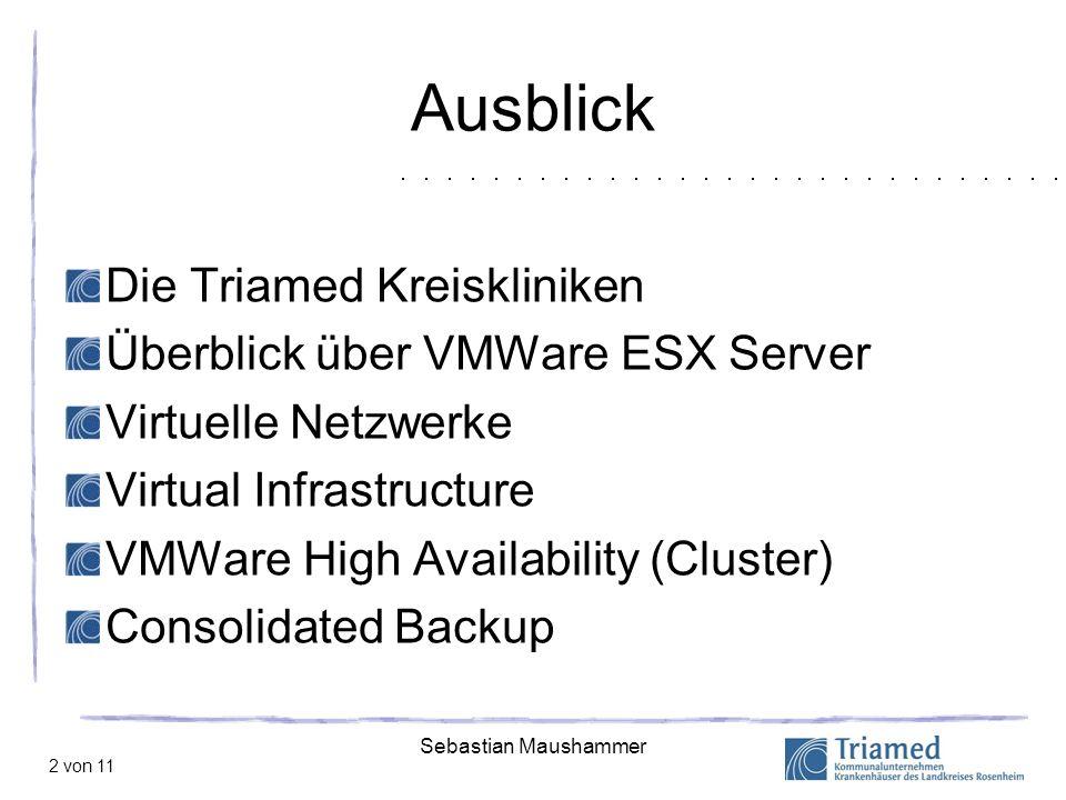 Ausblick Die Triamed Kreiskliniken Überblick über VMWare ESX Server