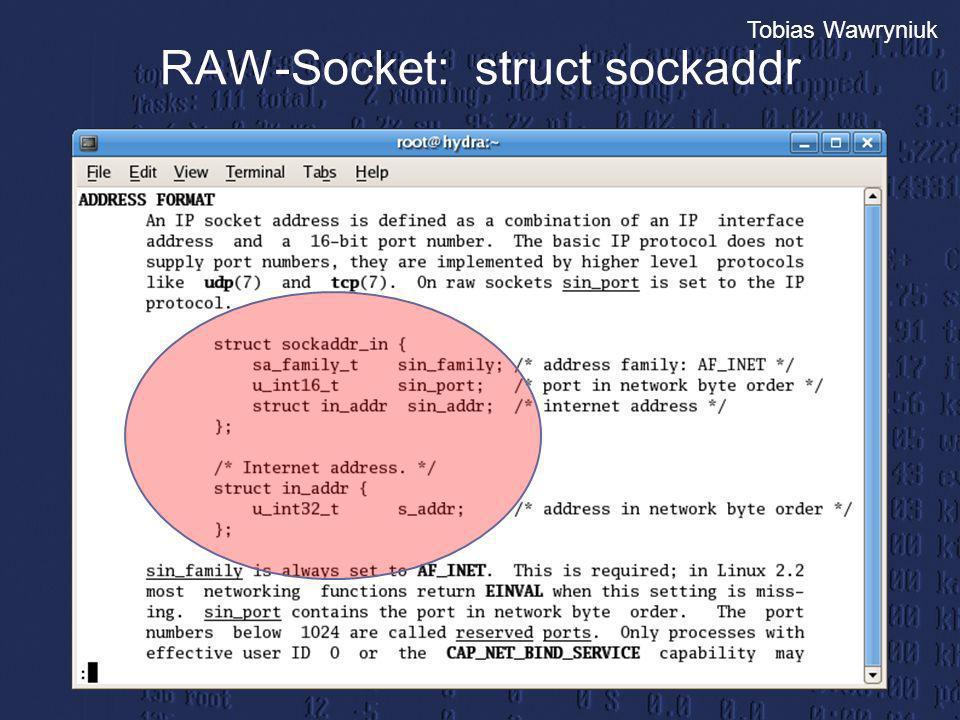 RAW-Socket: struct sockaddr