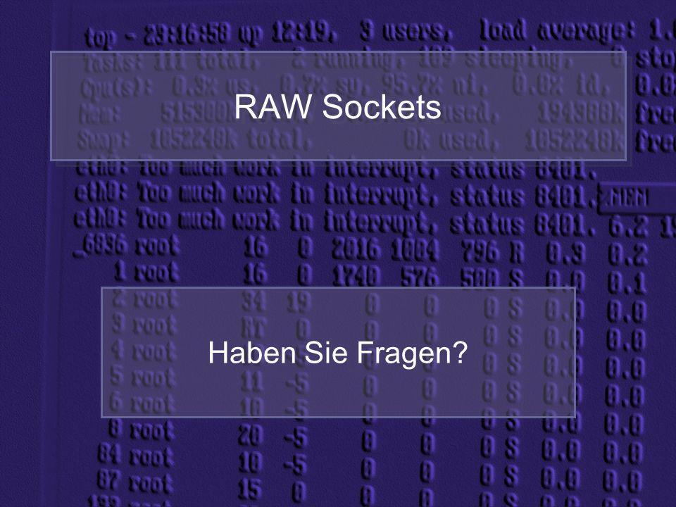 RAW Sockets Haben Sie Fragen