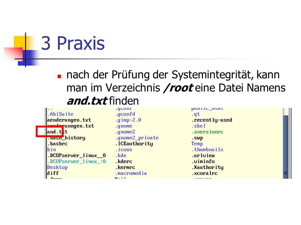 3 Praxis nach der Prüfung der Systemintegrität, kann man im Verzeichnis /root eine Datei Namens and.txt finden.